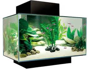 the age of aquariums the 163 3 900 fish tank daily mail