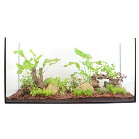 lot de plantes pour aquarium de 100 224 120 cm zooplus be