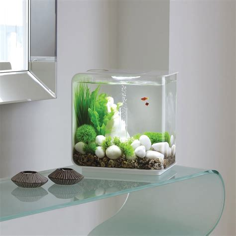 improve your home with modern fish tank