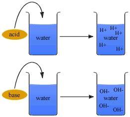 Acids, Bases, And Salts Smore