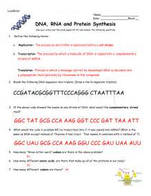 Free Printable Chapter 13 Rna And Protein Synthesis