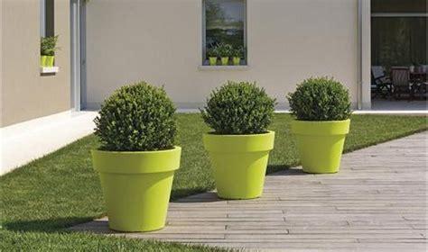 grand pot ikon pour arbuste et plantes d exception jarre pour arbuste pot pour plantes