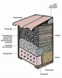 Vogelhaus Für Balkongeländer : bauanleitung insektenhotel kostenlos insektenhotel bauanleitung kostenlose bauanleitungen ~ Markanthonyermac.com Haus und Dekorationen