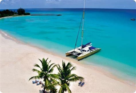 Catamaran For Sale Barbados by 48 Best Play In Barbados Images On Pinterest Barbados