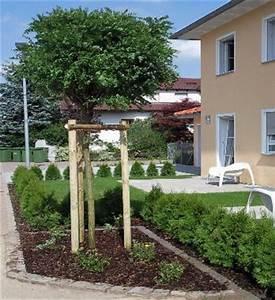 Dekorative Bäume Für Kleine Gärten : monsterhaus b ume f r kleine g rten ~ Markanthonyermac.com Haus und Dekorationen