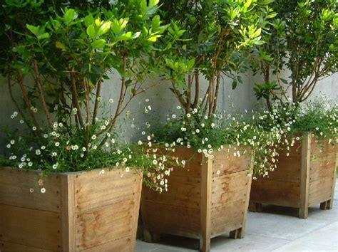 25 trending large plant pots ideas on large outdoor planters large garden planters