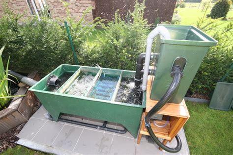 le bassin de jardin de papou le filtre