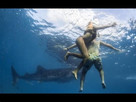 Soul Boat Videos by 5 Horrific Shark Attacks Caught On Tape 1 Youtube