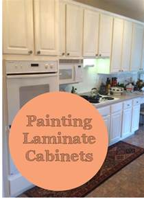 the ragged wren painting laminated cabinets