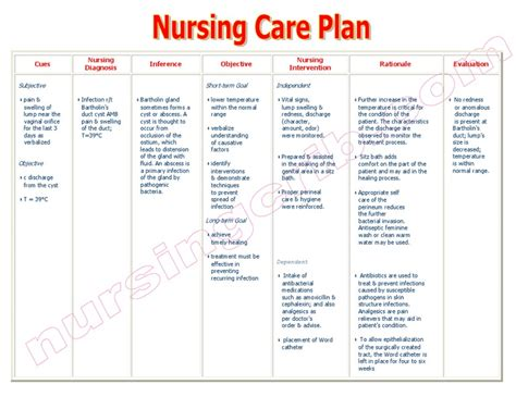 Nursingcribm Nursing Care Plan Infection Bartholins. How To Become A Registered Play Therapist. Trade Show Management Companies. Shanghai Business School College School Board. Macular Degeneration Drug Treatment. Colleges In Atlanta Ga For Nursing. Great Bay Mental Health Schaefer Middle School. Hipaa Compliance Software Trivia For Children. Mini Cooper S 2002 Specs Lock Repair Services