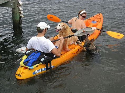 Big Bear Boat Rental Coupons by Kayak Prices Paddles And Pedals
