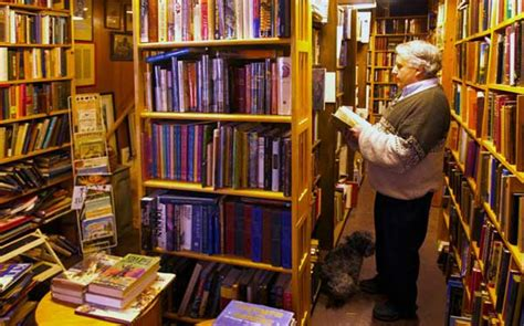 the book shed outpost books are a happening in benson