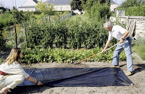6 techniques imparables pour se d 233 barrasser des mauvaises herbes d 233 tente jardin