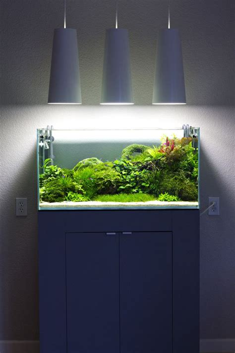 20 modern aquariums for cool interior styles home design and interior