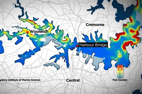 Boat Fishing Spots Sydney Harbour by Map Of Fishing Spots On Sydney Harbour Abc News