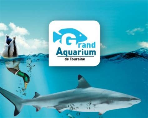 grand aquarium de touraine lussault sur loire