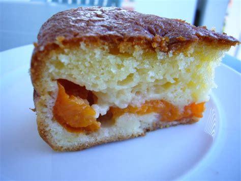 abricots pr 233 par 233 maison