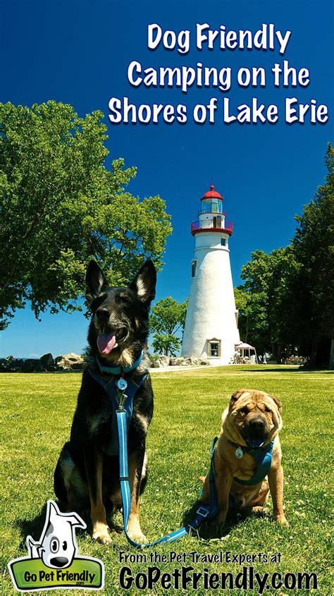 Dog Friendly Camping In Ohio On The Shore Of Lake Erie