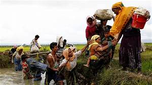 Myanmar Bars UN Human Rights Investigator | Financial Tribune