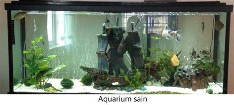 ou acheter un aquarium eau douce