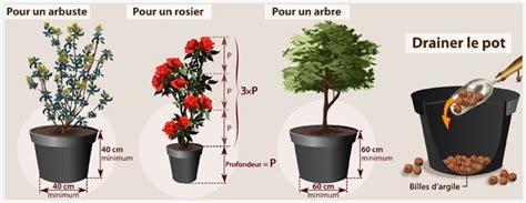 planter un arbuste ou un arbre en pot verger