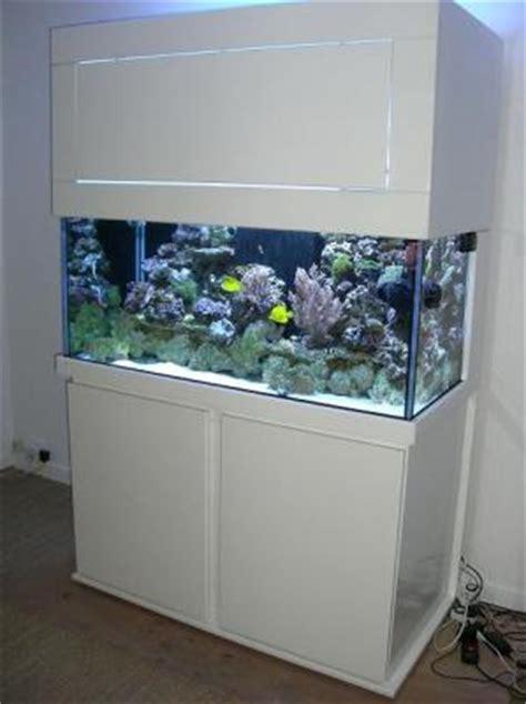 superbe aquarium eau de mer ou eau douce pas cher aquariophilie cely en biere