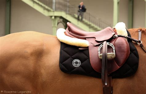 equestrian photography roxanne legendre saddles from saut herm 232 s pegasebuzz le cheval