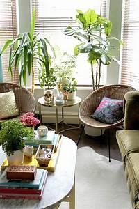 Palmen Für Die Wohnung : sch ne zimmerpflanzen bilder so k nnen sie ihre wohnung dekorieren zimmerpflanzen ~ Markanthonyermac.com Haus und Dekorationen