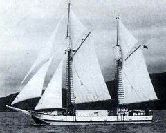 Scow Jane Gifford new zealand rigged sailing scow the jane gifford