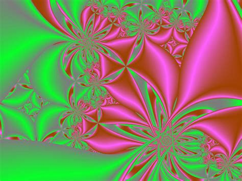 Green And Pink 2 Free Stock Photo  Public Domain Pictures