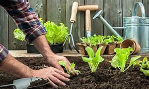 Garten Im Mai : bildquelle alexander raths ~ Markanthonyermac.com Haus und Dekorationen