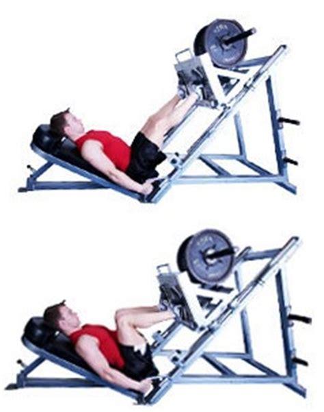 d 233 butantes comment utiliser les machines de la salle de fitnessfriandises fr
