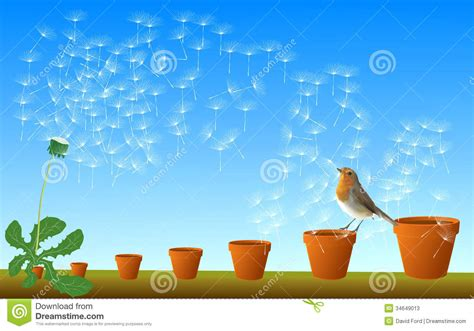 Flying Seeds Clipart Clipground