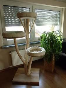Kratzbaum Echter Baum : kratzbaum baumstamm swalif ~ Markanthonyermac.com Haus und Dekorationen