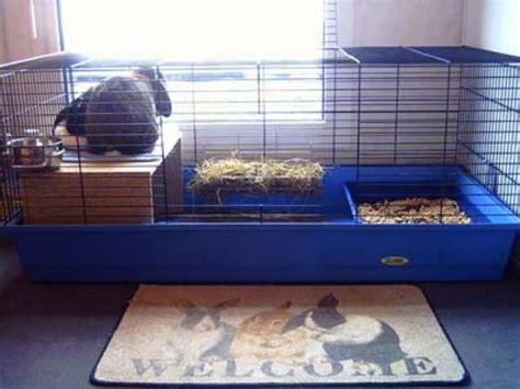 cage pour lapins la cage du lapin de l achat jusqu 224 l am 233 nagement page 3 wamiz