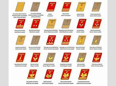 Ranks and insignia of the Nazi Party