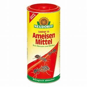 Mittel Gegen Rote Ameisen : neudorff loxiran ameisen mittel s 500 g bauhaus ~ Whattoseeinmadrid.com Haus und Dekorationen