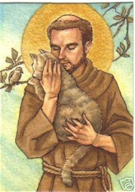1000 images about st francis and other friends on st francis francis and