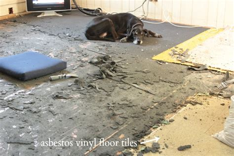 Covering Asbestos Floor Tiles With Hardwood by Preparing For Hardwood Floor Restoration Open Letter To