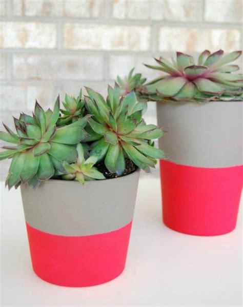 1000 id 233 es sur le th 232 me pots de fleurs sur jardinage plantes grasses et plantes