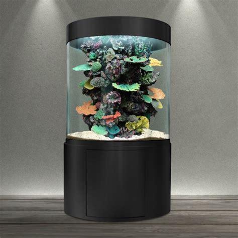 bacmarin 21 07 2012 les aquariums cylindriques