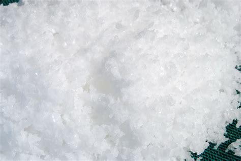 le sel de salies de b 233 arn