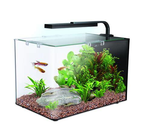 interpet ama51506 nano led complete aquarium fish tank kit 19 l 19 litre ebay