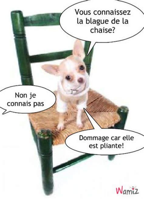 la blague de chaise tooniz lolcats r 233 alis 233 sur wamiz