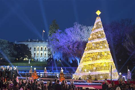 Is God Going To Do Away With Christmas Trees?