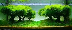 Coole Aquarium Deko : aquarium designs zum integrieren in der wohnung ~ Markanthonyermac.com Haus und Dekorationen
