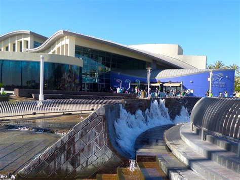 aquarium of the pacific photo gallery family vacation hub