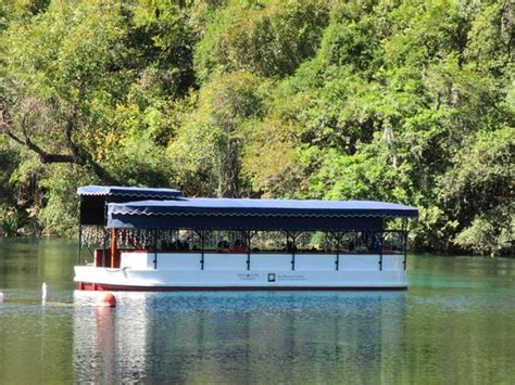 Glass Bottom Boat Austin Tx by One Of The Glass Bottom Boats Picture Of Aquarena