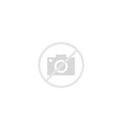 HD Wallpapers Birthday Cake Ideas For 70 Year Old Woman Wallpaper