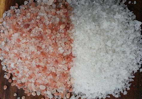 our anxiety their influence a skeptical response to the certainties of salt the bittersweet